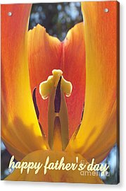 Happy Father's Day Acrylic Print by Tina Marie