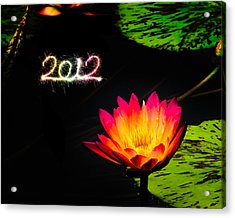 Happy New Year 2012 Acrylic Print by Michael Taggart
