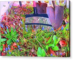 Acrylic Print featuring the photograph Happy Spring II by Ann Johndro-Collins