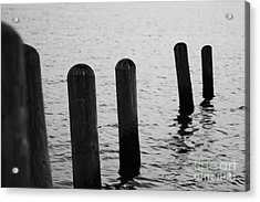 Acrylic Print featuring the photograph Harbor Ties by Tony Cooper
