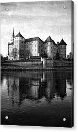 Hartenfels Castle Acrylic Print by Falko Follert