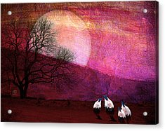 Acrylic Print featuring the digital art Harvest Moon Sheep by Jean Moore