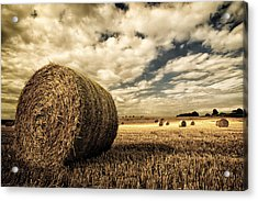 Harvest Time Acrylic Print by Rick Parrott
