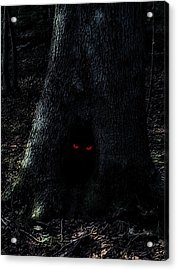 Haunted Tree Acrylic Print by Walt Stoneburner