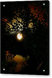 Acrylic Print featuring the photograph Haunting Moon IIi by Jeanette C Landstrom