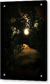 Haunting Moon Acrylic Print by Jeanette C Landstrom