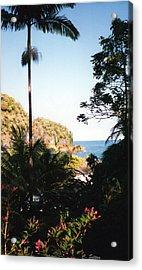Hawaii Palm And Surf Acrylic Print