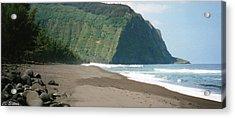 Hawaii Shore Acrylic Print