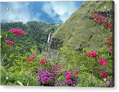 Acrylic Print featuring the photograph Hawaii Waterfall by Geraldine Alexander
