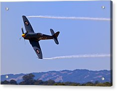 Hawker Sea Fury Acrylic Print by Garry Gay