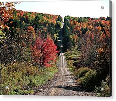 Acrylic Print featuring the photograph Hawks Rd by Christian Mattison