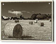 Hay Bales In Sepia Acrylic Print