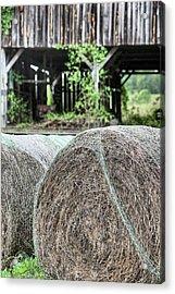 Hay Acrylic Print by JC Findley