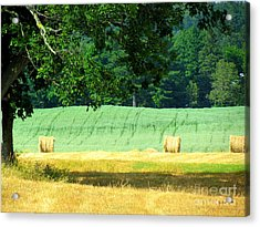 Acrylic Print featuring the glass art Hay Landscape by France Laliberte