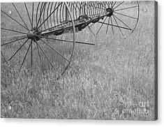 Hay Rake  Acrylic Print by Wilma  Birdwell