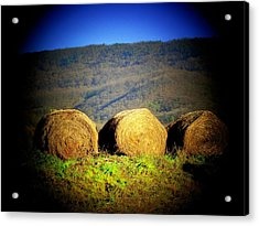 Hay Rolls On Mountain Acrylic Print by Michael L Kimble