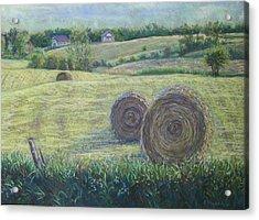 Haybales Durham County Acrylic Print by Ruth Greenlaw