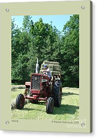 Haying Acrylic Print by Patricia Overmoyer