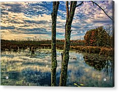Hd Lakeview Acrylic Print by Terry Cork