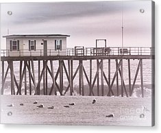Hdr Beach Beaches Ocean Sea Seaview Black White Photos Pictures Photographs Photography Photo Pics Acrylic Print by Pictures HDR