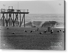 Hdr Black White Beach Beaches Ocean Sea Seaview Waves Pier Photos Pictures Photographs Photo Picture Acrylic Print by Pictures HDR