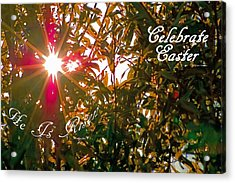 He Is Risen Easter Greeting Acrylic Print by DigiArt Diaries by Vicky B Fuller