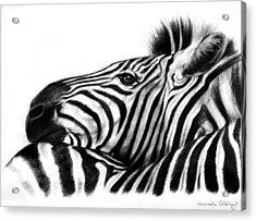 Head Rest Acrylic Print by Lucinda Coldrey