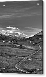 Headed To Mc Kinley D9746 Acrylic Print by Wes and Dotty Weber