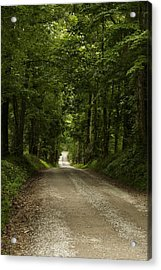 Heading Out Acrylic Print by Andrew Soundarajan