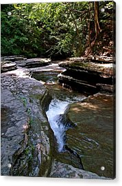 Acrylic Print featuring the photograph Headwaters by Christian Mattison