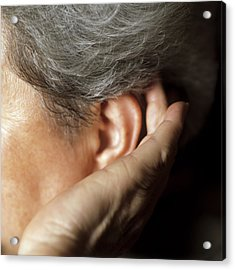 Hearing Loss Acrylic Print by Cristina Pedrazzini