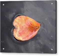 Acrylic Print featuring the painting Heart - Leaf by Teresa Beyer