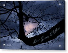 Heart In Tree Love Grows Within  Acrylic Print