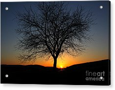 Acrylic Print featuring the photograph Heart Of The Land by Everett Houser