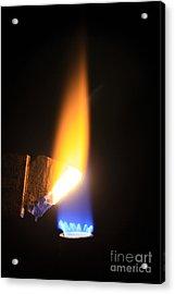 Heating Lime Limelight Acrylic Print by Ted Kinsman