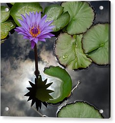 Heaven And Earth Reflections Acrylic Print
