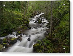 Heavenly Flow Acrylic Print by Mike Reid