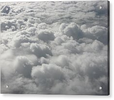 Heavenly Fluff Acrylic Print