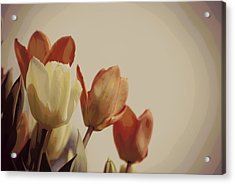 Acrylic Print featuring the photograph Heavenly Glow by Marilyn Wilson