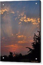 Heavenly Rays Acrylic Print by Joyce Dickens