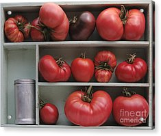 Heirloom Tomatoes With An Old Salt Shaker Acrylic Print by Ruby Hummersmith
