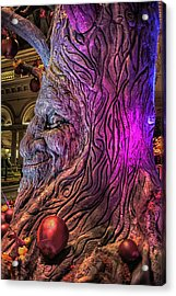 Heres Lookin At You Acrylic Print by Stephen Campbell