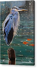 Heron In Blue Acrylic Print by Janet McDonald