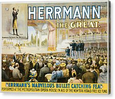 Herrmann The Great Acrylic Print by Unknown