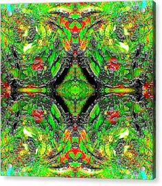 Hexatribe Acrylic Print by Christian Allen