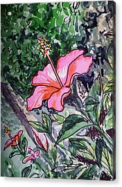 Hibiscus Sketchbook Project Down My Street  Acrylic Print by Irina Sztukowski