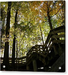Acrylic Print featuring the photograph Hidden Hike by Robin Dickinson