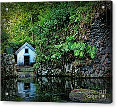 Hide A Way Acrylic Print