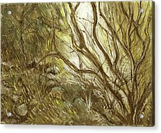 Hideaway Plants In Brown Yellow And Green Branches Leaves Trunks Stones Acrylic Print by Rachel Hershkovitz