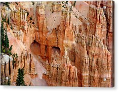 Acrylic Print featuring the photograph Hideaway  by Vicki Pelham
